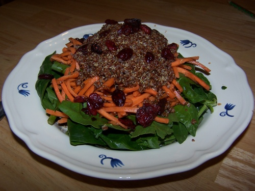 Spicy Quinoa and Cranberry Salad
